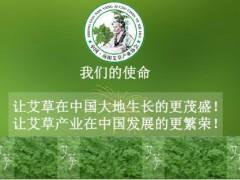 2019第三届中国艾产业发展大会