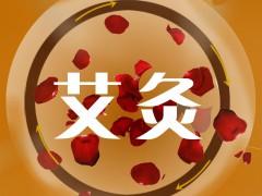 2019第四届上海艾灸仪器及艾草制品展览会